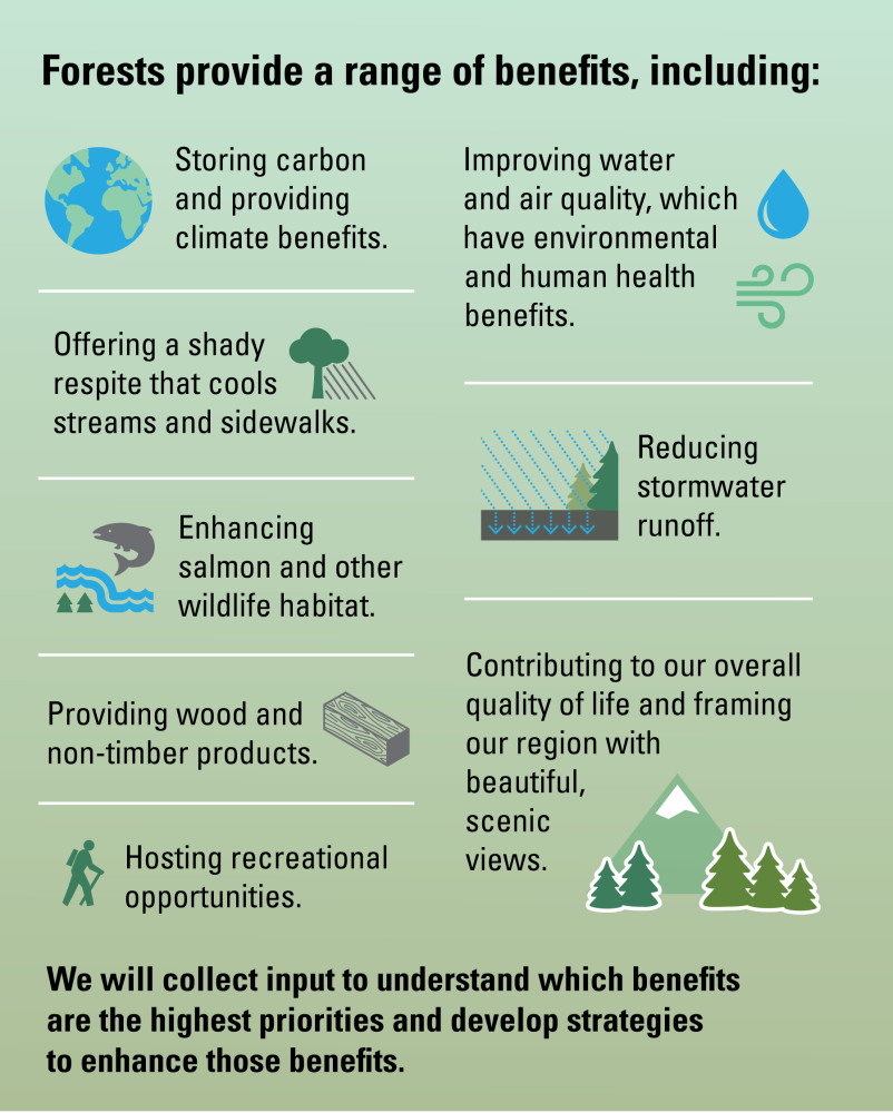 Forest benefits